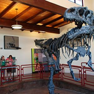 Three people look at an Allosaurus dinosaur in the Cleveland Lloyd Dinosaur Quarry visitor center.