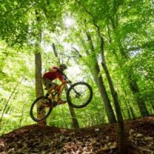 Bicyclist launches above a mountain biking trail under a canopy of green trees.
