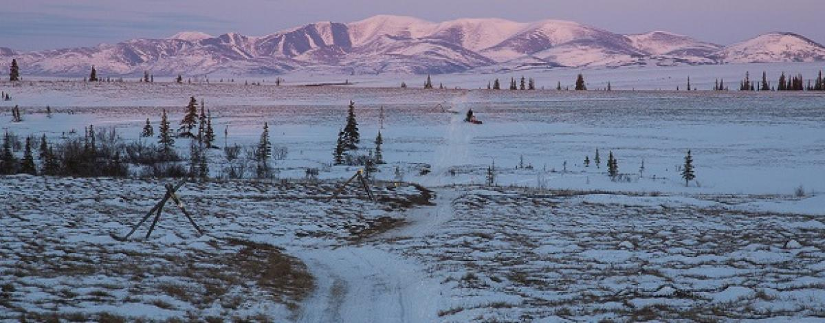 Iditarod National Historic Trail near Kaltag with alpenglow mountains
