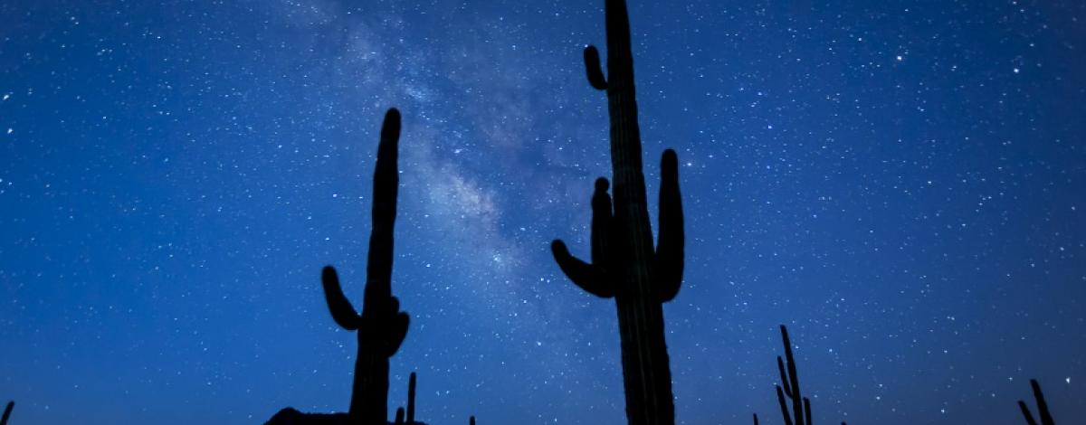 Night skies on the Sonoran Desert National Monument