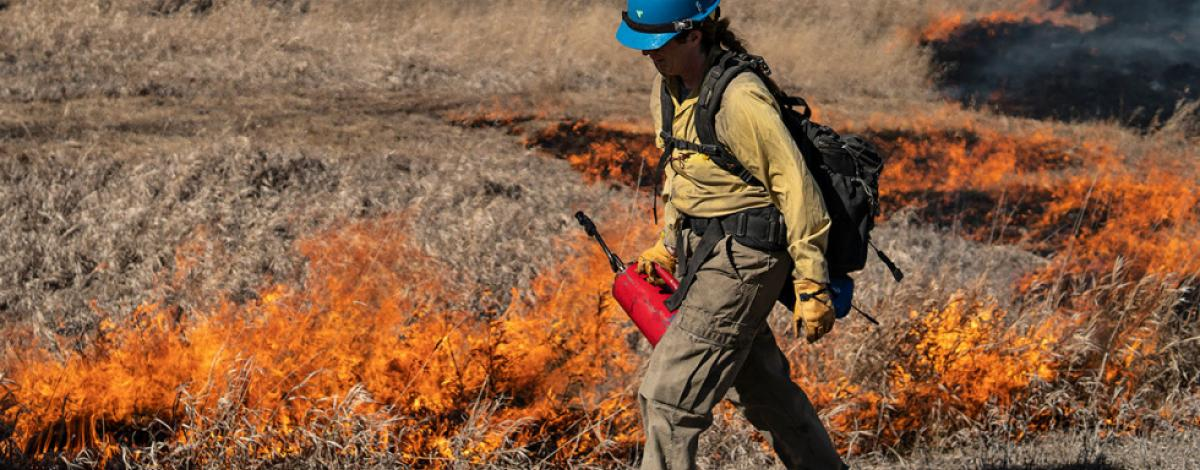 Pompeys Pillar National Monument Prescribed Fire. Photo by Colby Neal, BLM