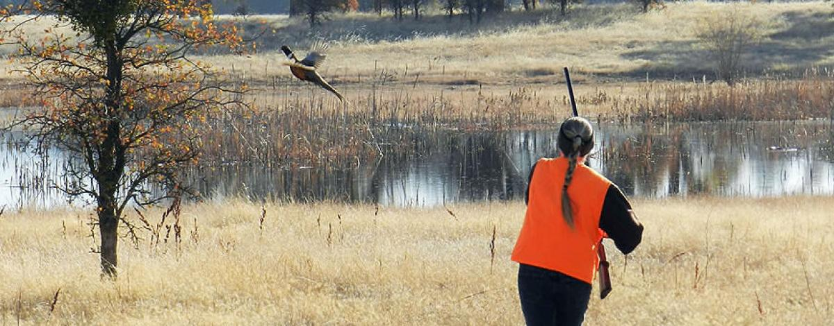 A woman carries a rifle as she watched a pheasant take flight.  (BLM Photo)