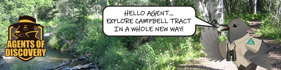 Agents of Discovery logo. Campbell Tract in the summer with creek and trail. Agent Dipper saying: HELLO AGENT... EXPLORE CAMPBELL TRACT IN A WHOLE NEW WAY!