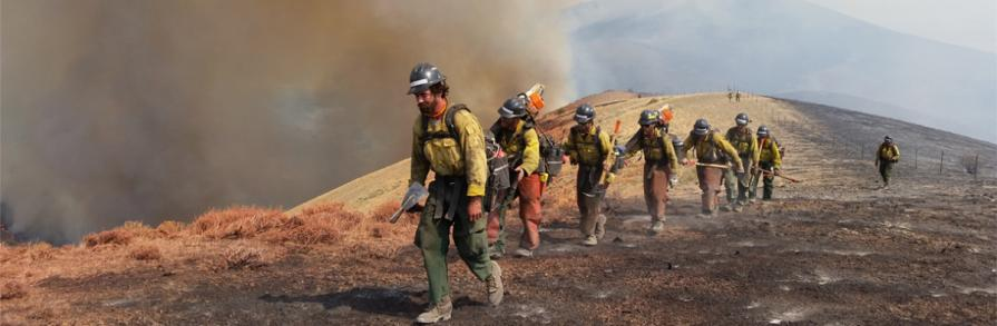 Jackson Fire Crew walking back to camp after working on fire