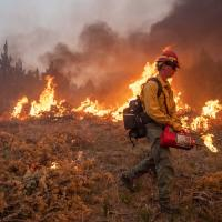 Bureau of Land Management firefighter igniting areas of heavy, downed juniper jackpots during the 2019 Trout Springs Prescribed Burn in Owyhee County, Idaho