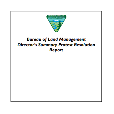 A sample of a BLM Director's Protest Resolution cover page.  Typically the name of the report is the only other content on the page