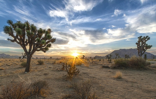 California Desert National Conservation Lands, Photo by BLM