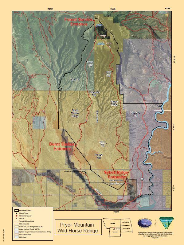Pryor Mountains Wild Horse Range HMA | Bureau of Land Management