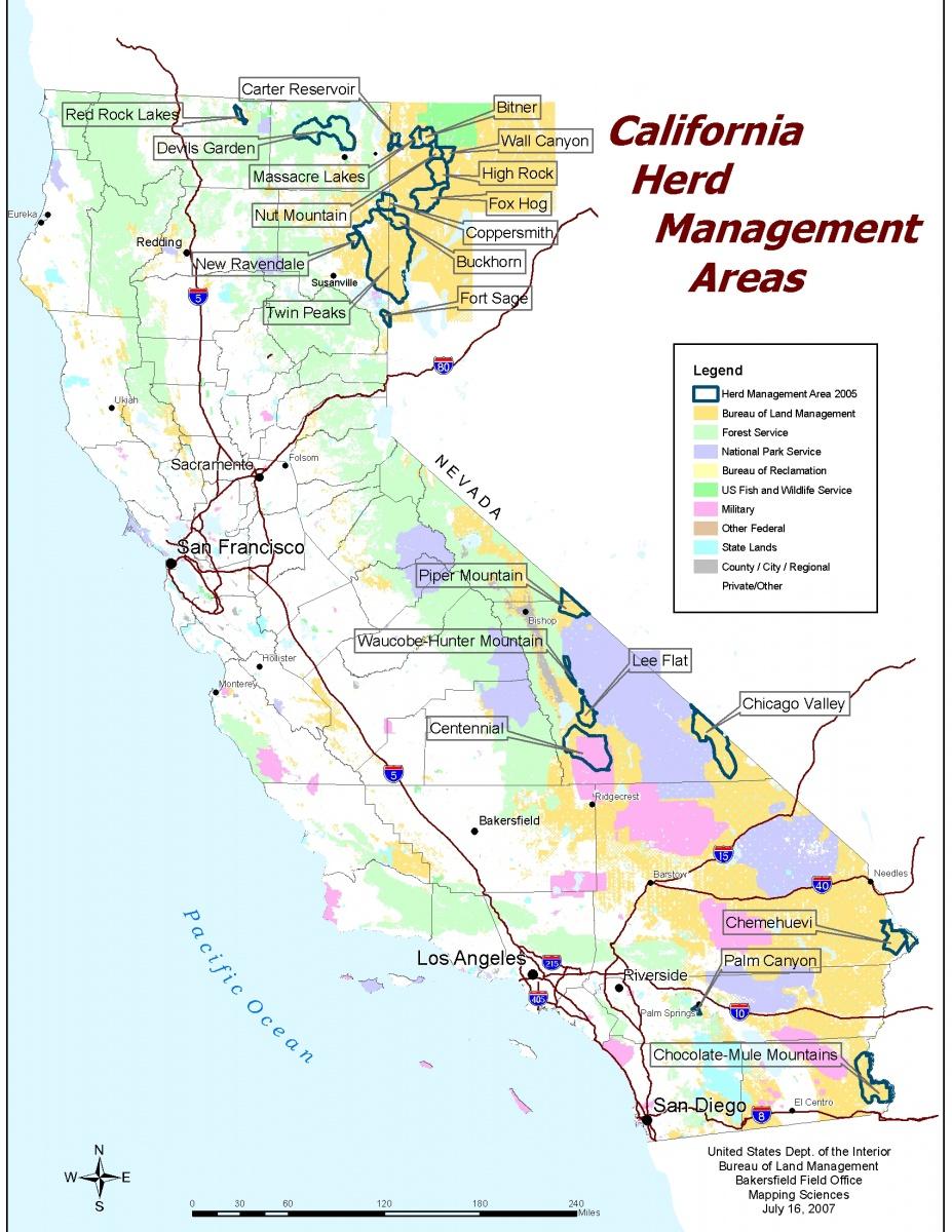 California   Herd Management Areas | BUREAU OF LAND MANAGEMENT